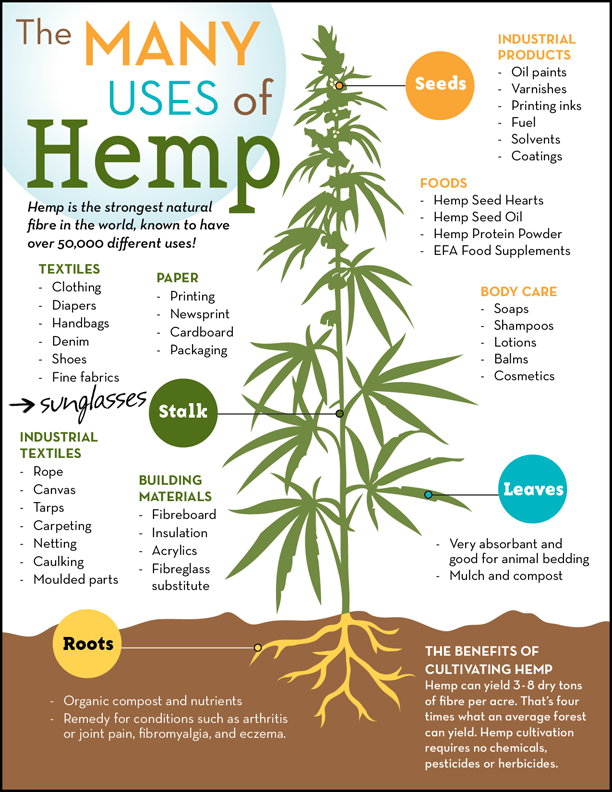 Uses_of_Hemp_Poster